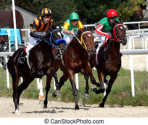 PYATIGORSK, RUSSIA - OCTOBER 11: The race for the prize of the season race-Closing, October 11, 2009 in Pyatigorsk, Caucasus, Russia.