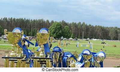 horse racing cups awards - Horse race competition cups...