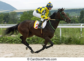Horse race for the traditional prize Bolshoi Letni in Pyatigorsk, the largest in Russia.