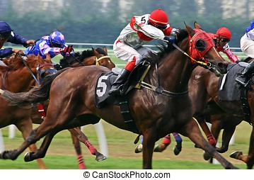 Horse Racing - Horse racing game.