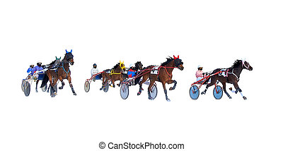 horse racing horses gallop isolated on white background