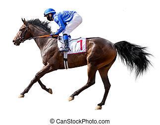 horse racing jockey isolated on white background