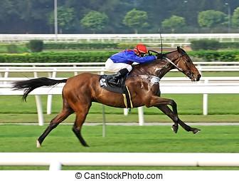 Horse Racing - Horse racing game