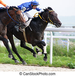 Start gates for horse races for the prize of Letni in Pyatigorsk, Russia.
