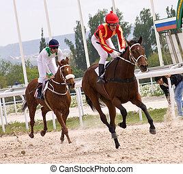 Horse racing - Race for the prize of Nazarova, hippodrome in...