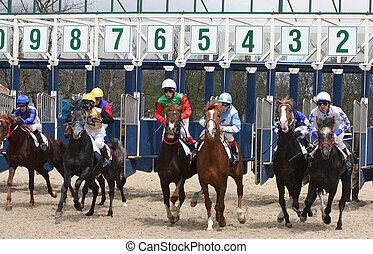 Horse racing. - Riders at the start of a race for the prize...