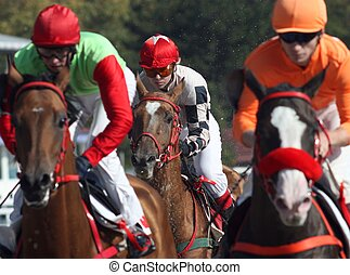 Horse racing. - The race for the prize of the The Day of ...