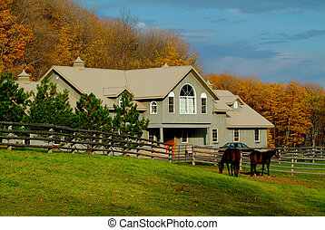 Horse Ranch in the beautiful colors of fall