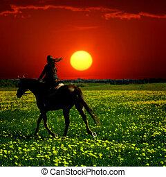 horse rider in green dandelion field