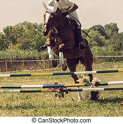 horse rider jumps