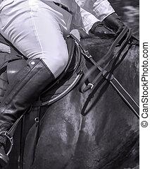 Horse rider Leather saddle hanging horses sport