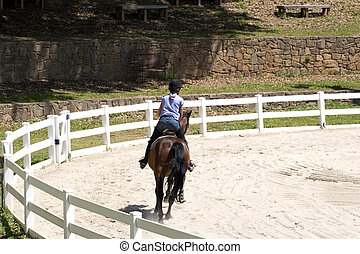 Horse Rider on Course
