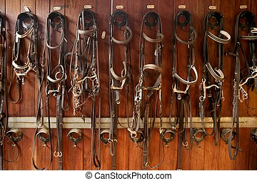 Horse riders complements, rigs, reins, leather over wood -...
