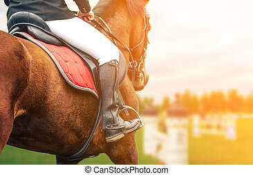 Horse riding closeup on show jumping field, toned image