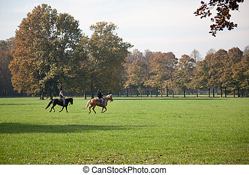Horse riding in Parco di Monza Italy