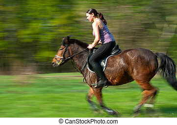 Horse Riding - Pretty girl and bay horse during the sunny...