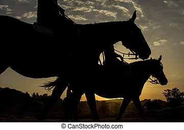 Horse riding silhouette