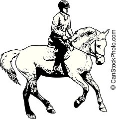 horse riding sketch illustration