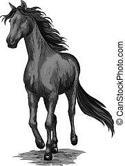 Horse running sketch of galloping black stallion