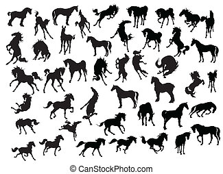 Horse Silhouette Collection - Illustration