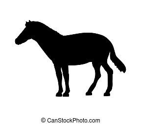 Horse silhouette extinct mammalian animal. Vector...