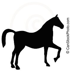 horse silhouette isolated on white - Vector Image - horse...