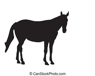 horse-silhouette