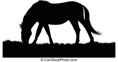 horse silhouette - vector, black silhouette of horse eating...
