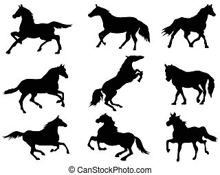 horse Silhouettes - isolated black horse Silhouettes from...