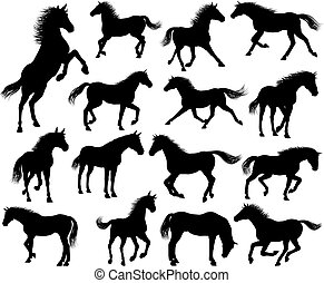 Horse Silhouettes Set - A set of horse animal detailed...