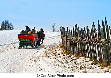 Horse sledge in action in winter landscape - Horse sledge in...