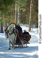 Horse sledge - Typical Russian fun - winter horse sledge...