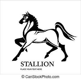 Horse, Stallion, Standing Horse