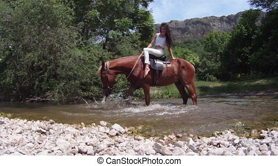 Horse stamping in a river