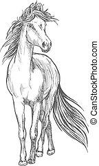 Horse standing with waving mane pencil sketch - Standing...