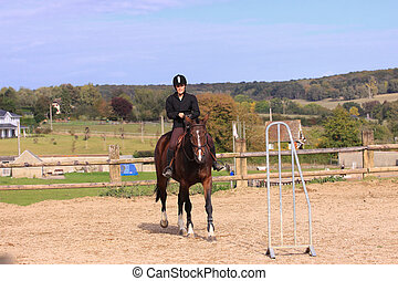 Horse to relax with a young rider before a contest