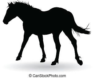 horse trot vector illustration