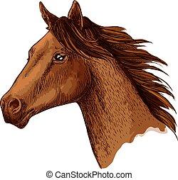 Horse trotter head vector sketch symbol - Horse or racehorse...