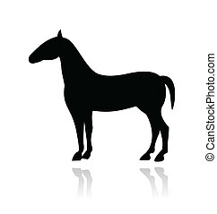 Horse vector icon with reflection