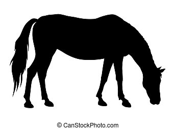 Horse - vector illustration of feeding horse silhouette