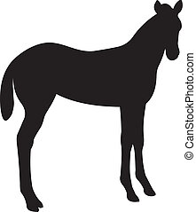 Horse vector. To see similar, please VISIT MY PORTFOLIO