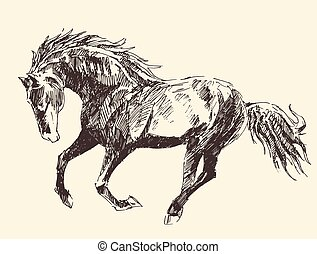 Horse Vintage Engraved Illustration, Hand Drawn