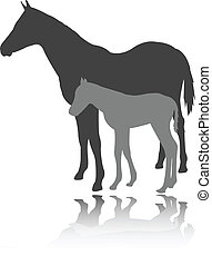 Horse with foal - vector