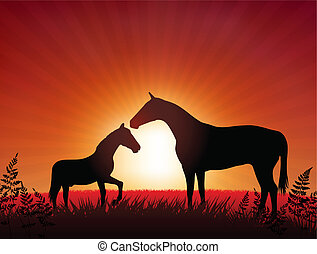 horse with kid on sunset background