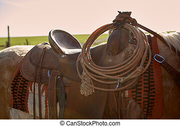 Horse with saddle in close up view