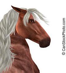 Horse with white mane