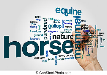 Horse word cloud concept
