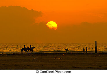 horseback riding and sunset - horseback riding on a...