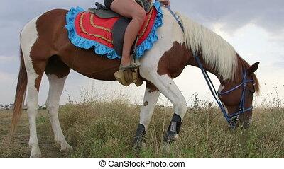 Horseback riding in countryside