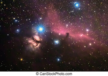 Horsehead and flaming tree nebula, in the constellation of Orion, Milky Way